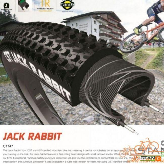 Tire CST Jackrabbit FOLDING TIRE 27.5 or 29er XC Tires